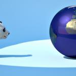 Panda Approaching