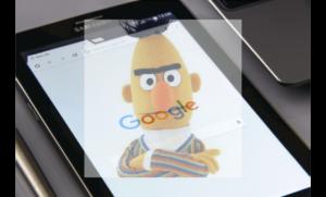 bert google update seo search results